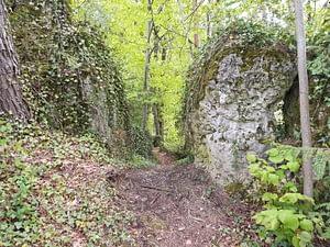 Wandern schmidberg