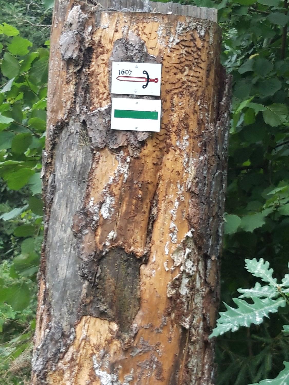 Wegemarkierungen