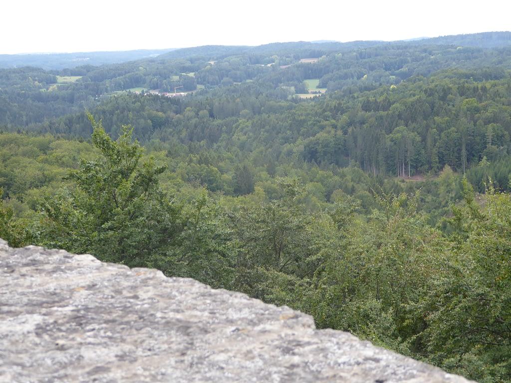 Der Blick von der Burgruine in den Naturpark