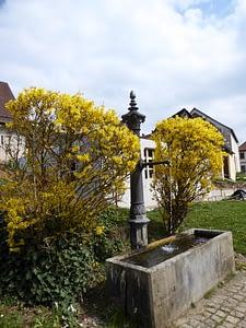 Brunnen Niedermirsberg