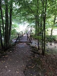 Holzbrücke