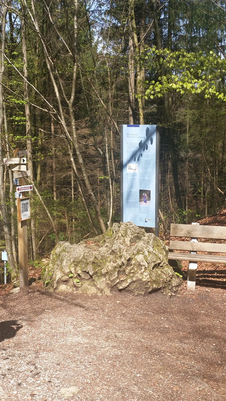 Abstieg zur Riesenburg